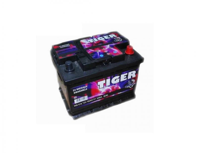 Akkumulátor TIGER 66AH jobb+ 540A