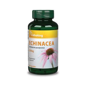 Echinacea (Bíbor kasvirág) 250mg Vitaking-90 kapszula