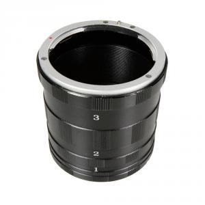 Canon közgyűrű