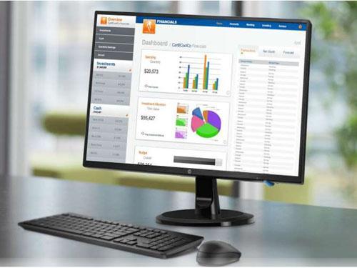 HP n246v monitor 24 coll