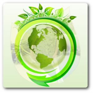 Egyéb zöld termékek