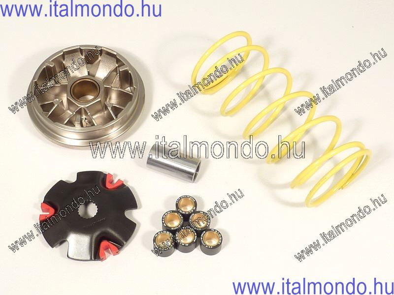 variátor F12-CIAK 100 MALOSSI
