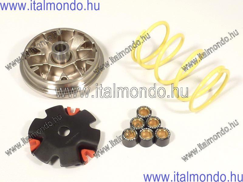 variátor HONDA BALI-SFX-X8R MALOSSI