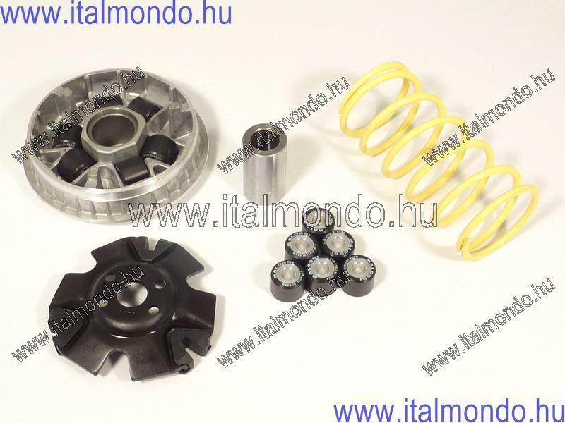 variátor LEONARDO 125 MALOSSI