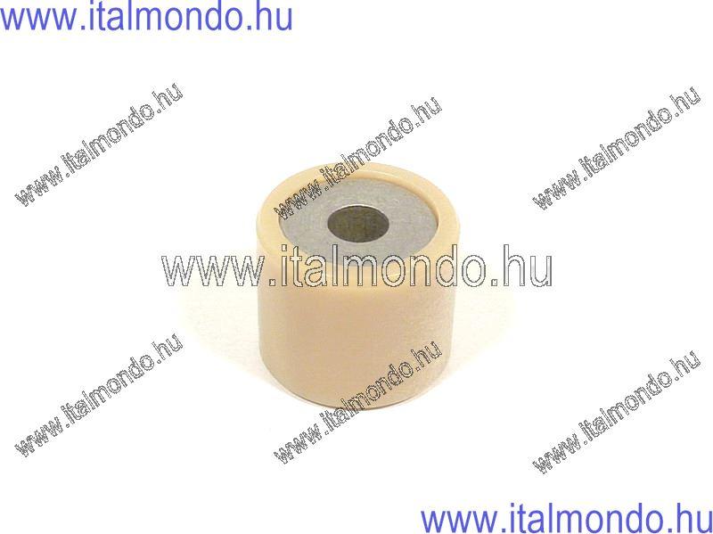 variátorgörgő 20x17 9,5 gr LEONARDO 125 APRILIA