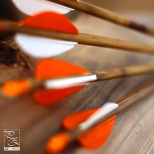 Nyílvesszők / Arrows