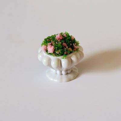 Kaspó+növény, átm: 2cm, magassága: 2 cm