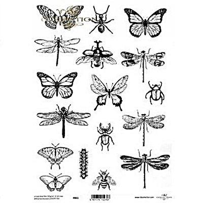 Kristály fólia - pillangók, szitakötők