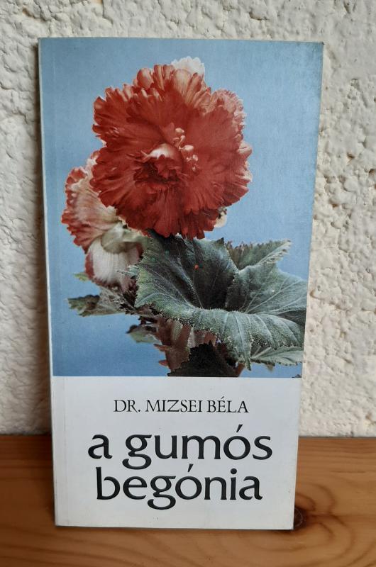 Dr. Mizsei Béla: A gumós begónia