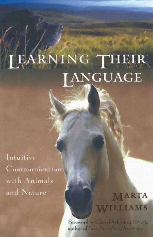 Williams: Learning their language