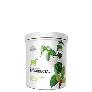 POKUSA - Reproductal Plus 350 grammos